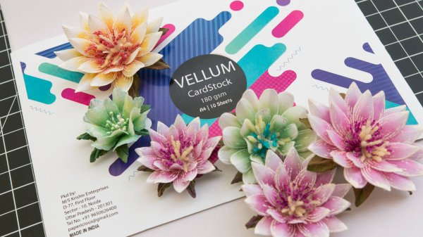 PAPERICIOUS - Vellum Flowerite - 180GSM Colored Cardstock / 10 Sheets