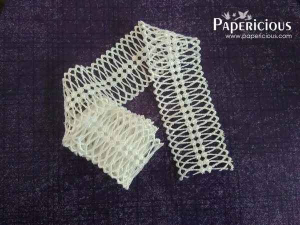 PAPERICIOUS - Swirl Mesh Lace / 1 Yards